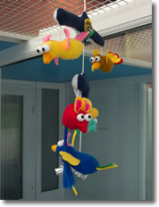 Colourful mobiles hang in our pens